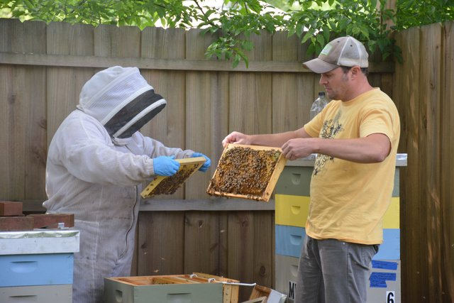 CSUN FEAT Beekeeping2.jpg