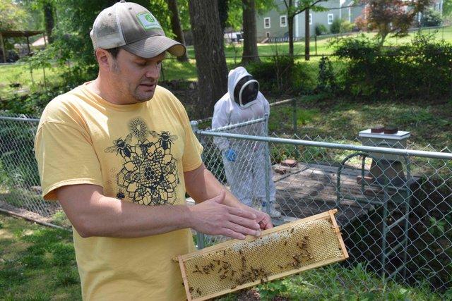 CSUN FEAT Beekeeping4.jpg